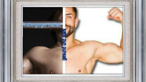 Muskeln2